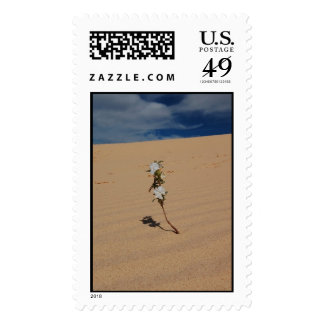 Monahans Sand Dunes Postage Stamp