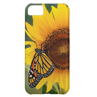 Monarca Butterfies en el girasol Funda Para iPhone 5C