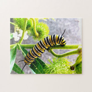 Monarca Caterpillar Rompecabeza