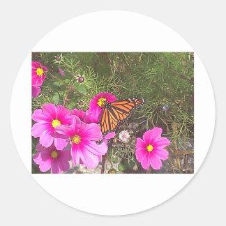 Monarca en la flor rosada brillante pegatinas redondas