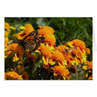 Monarca en la tarjeta de felicitación de las marav