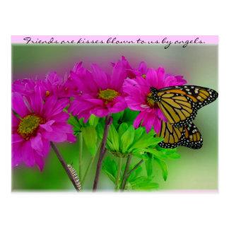 Monarcas y postal de las margaritas