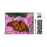 Monarch 1 Postage