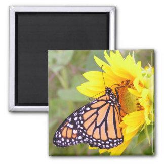 Monarch 2 Inch Square Magnet