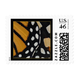Monarch Abstract No2 Postage - Small