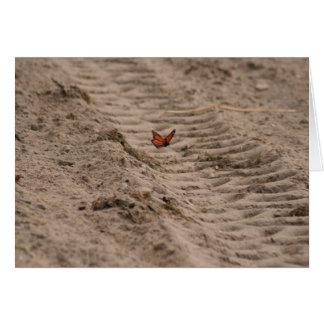 Monarch at the Beach Card