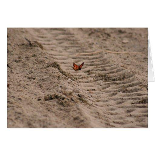 Monarch at the Beach Greeting Card