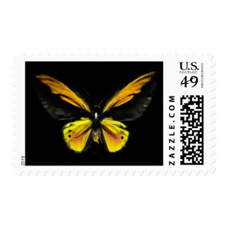 Monarch Bufferfly postage stamps