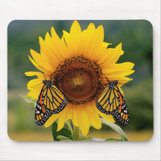 Monarch Butterfies on Sunflower Mouse Pad