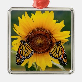 Monarch Butterfies on Sunflower Christmas Tree Ornament