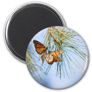 Monarch Butterflies 2 Inch Round Magnet