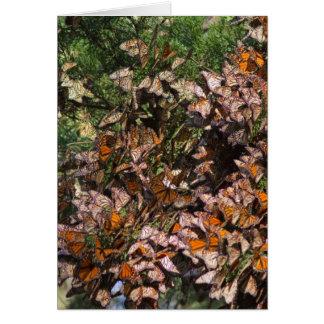 Monarch Butterflies Card