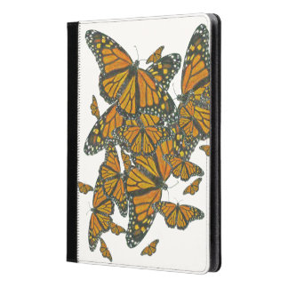 Monarch Butterflies - Migration