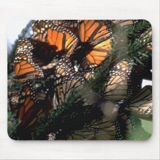 Monarch Butterflies Mouse Pad