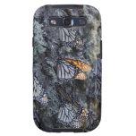 Monarch Butterflies on Pine Tree, Sierra Chincua 2 Galaxy SIII Covers