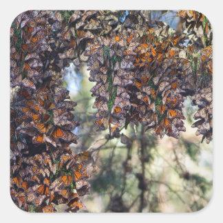 Monarch Butterflies Square Sticker