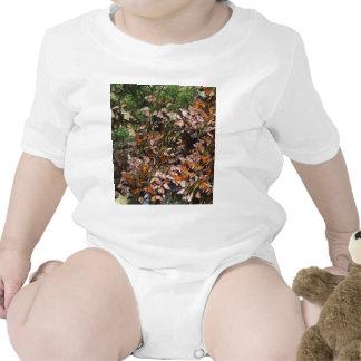 Monarch Butterflies Shirt
