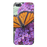 Monarch butterfly #1 phone case covers for iPhone 5