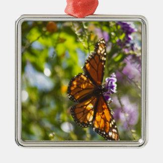 Monarch Butterfly 2 Metal Ornament