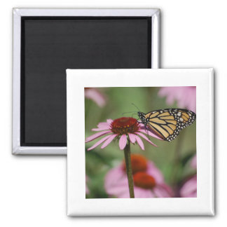 Monarch Butterfly and Black Eyed Susan Magnet