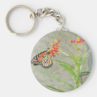Monarch Butterfly and Caterpillar Keychain