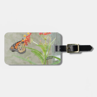 Monarch Butterfly and Caterpillar Luggage Tag