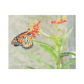 Monarch Butterfly and Caterpillar Wrapped Canvas
