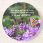 Monarch butterfly and purple flowers coaster