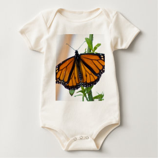 Monarch Butterfly Baby Creeper
