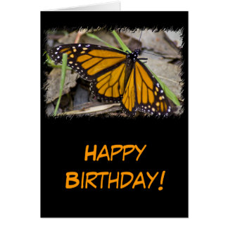 Monarch Butterfly Birthday Greeting Card