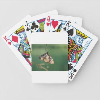 MONARCH BUTTERFLY BROWN RURAL QUEENSLAND AUSTRALIA POKER CARDS