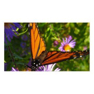 Monarch Butterfly Double-Sided Standard Business Cards (Pack Of 100)