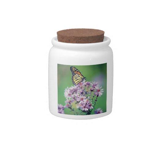 Monarch Butterfly Candy Jar