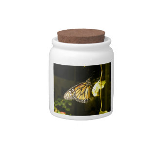 Monarch Butterfly Candy Jars