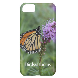 Monarch Butterfly iPhone 5C Cases