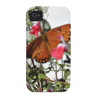 Monarch Butterfly iPhone 4/4S Covers