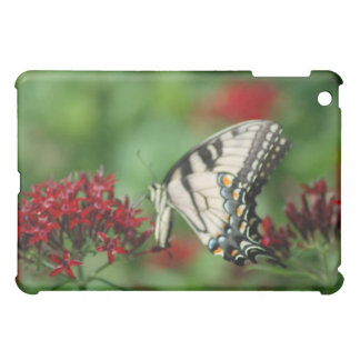 monarch butterfly case for the iPad mini