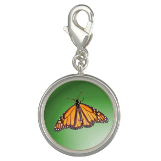 Monarch butterfly ~ Charm