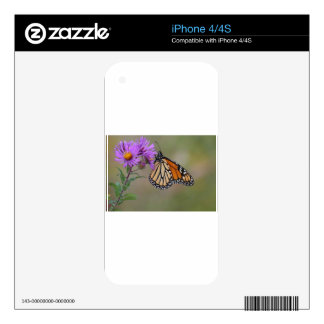 Monarch Butterfly Decal For The iPhone 4
