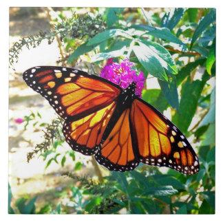 Monarch Butterfly Decorative Ceramic Tile