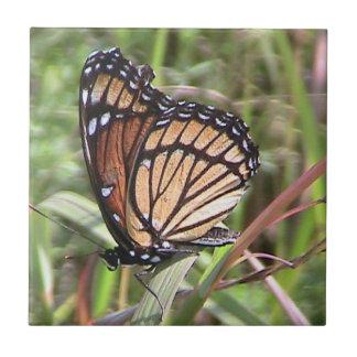 Monarch Butterfly Decorative Tile