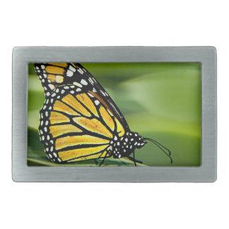 Monarch Butterfly Design Buckle Rectangular Belt Buckle