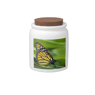 Monarch Butterfly Design Candy Jar