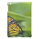 Monarch Butterfly Design iPad Case