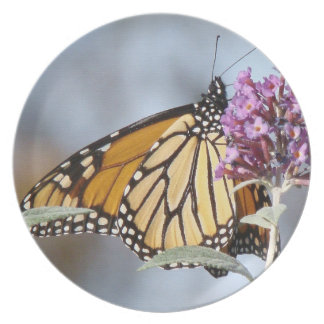 Monarch Butterfly Flower Floral Wildlife Animal Plate