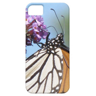 Monarch Butterfly Flowers Floral Wildlife iPhone SE/5/5s Case