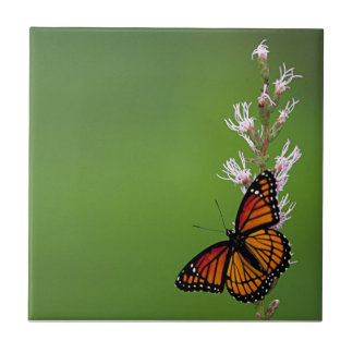 Monarch Butterfly Gradient Tile