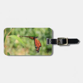 Monarch butterfly in Flight Luggage Tag