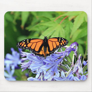 Monarch butterfly in garden mouse pad