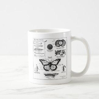 Monarch Butterfly Information Coffee Mug